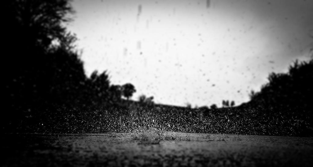 mientras discurren las aguas más cercanas (mientras la tempestad sigue en su apogeo) (blog espacios en blanco)