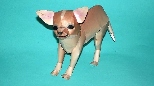 Perro Chihuahua (Canon) CONCLUIDO 214DB490E2334D44ED862B4D44ECF7