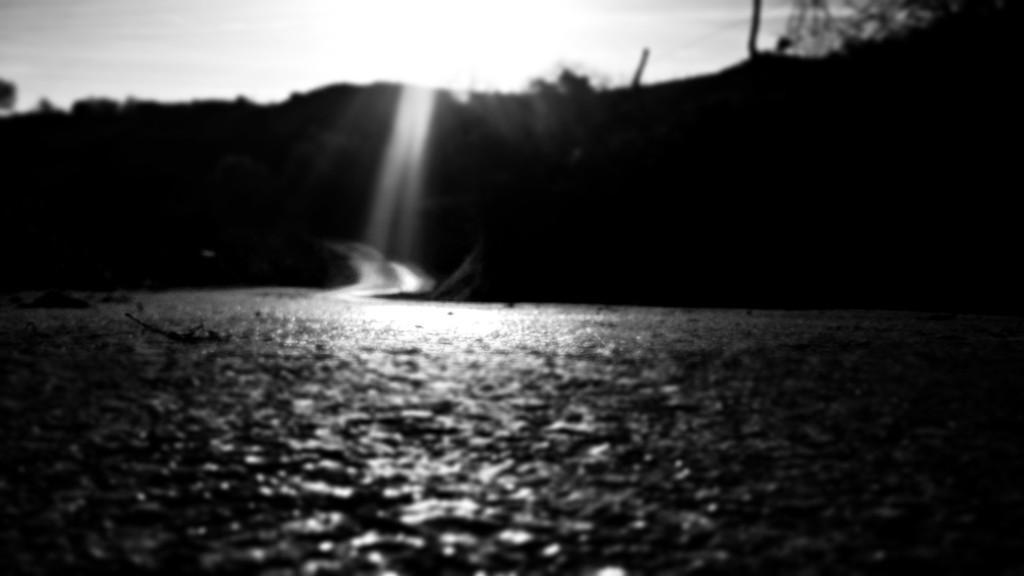 todo lo que nos mueve (curiosidad hambre miedo) (blog espacios en blanco)