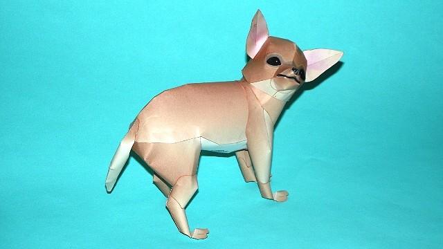 Perro Chihuahua (Canon) CONCLUIDO 294DB491322E4D44EDDB2A4D44ED47