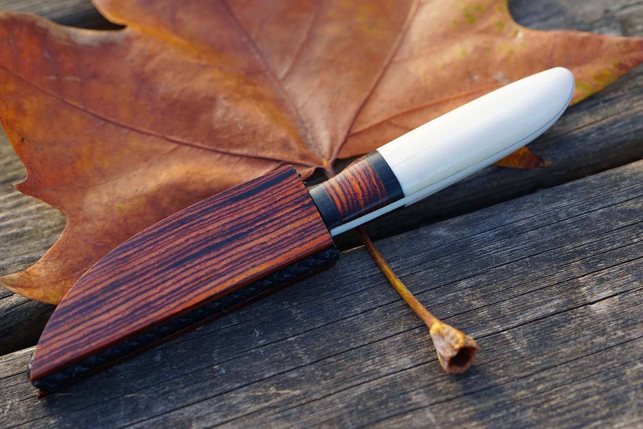 de marfil con madera de palisandro y ebano funda de madera a juego