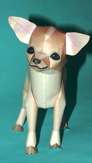 Perro Chihuahua (Canon) CONCLUIDO 2C4DB49123304D44EDCB2D4D44ED38