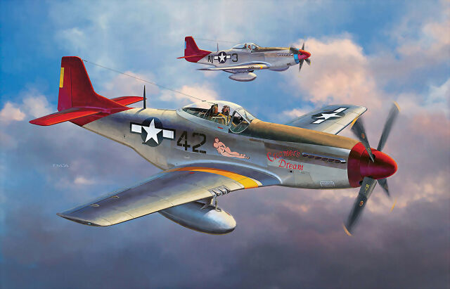 Why Did The Tuskegee Airmen Paint Their Tails Red