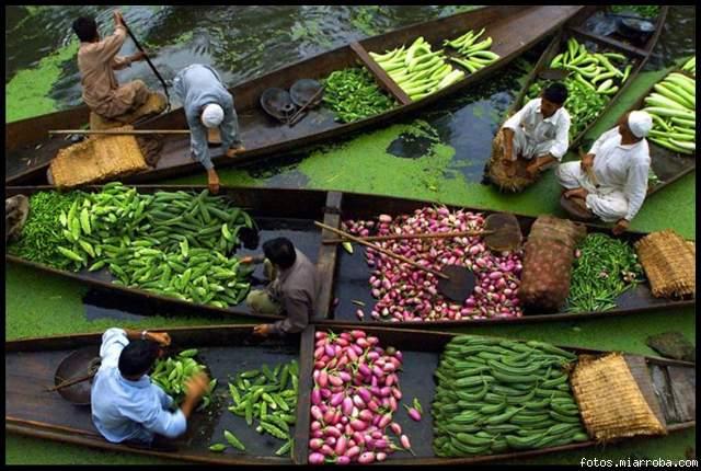 Vendedores de verduras de Kashmiri en un mercado flotante en el lago Dal, Srinagar.