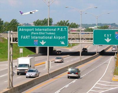pet airport