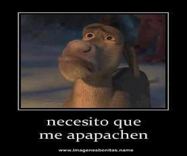necesito_que_me_apapachen