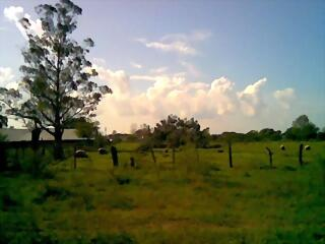 Terreno de Bvard. Martinez
