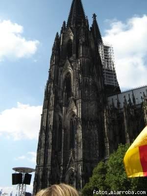 Colonia 2005