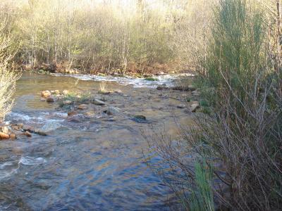 Río Fontirín, a su paso por Puente Nuevo (Muelas)