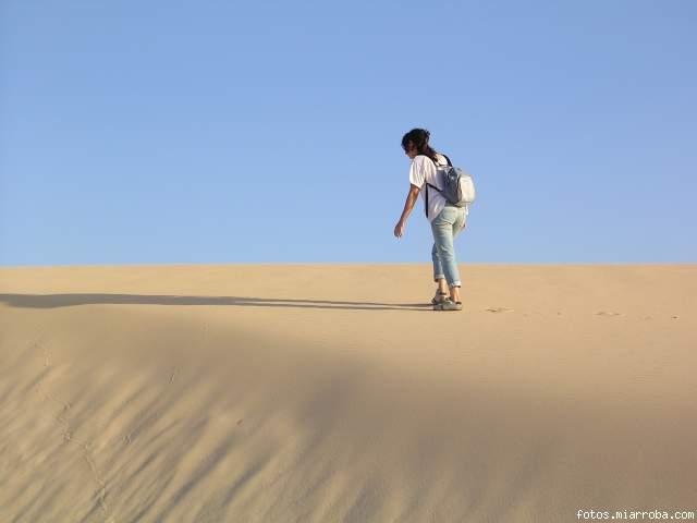 Vagando por el desierto