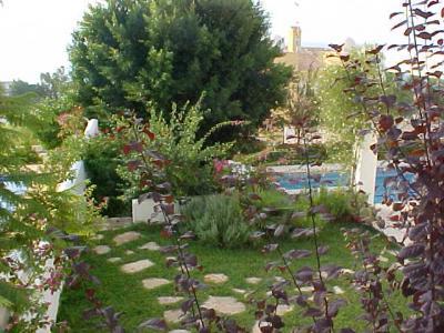 Jardín, piscina