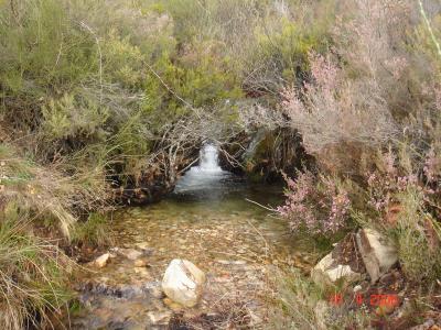 Arroyo que va al Fontirín, en Velilla (Muelas)