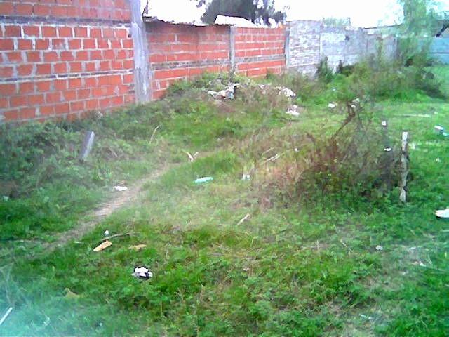 Calle J:J. Franco entre Victoria Y S. Mosto -