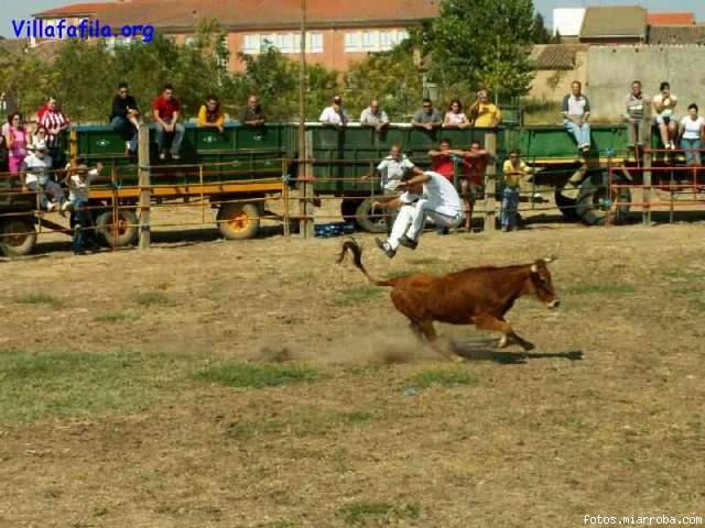 Saltando la vaquilla