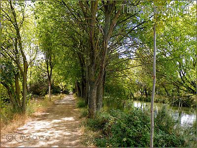 Darsena_de_Palencia_002
