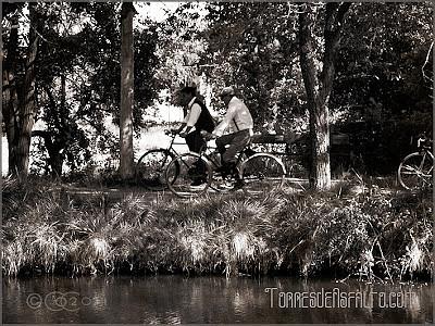 bicicletas_clasicas_en_la_Darsena_de_Palencia