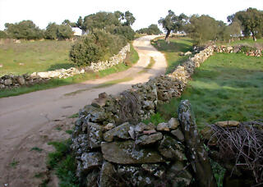 Camino_Sayago