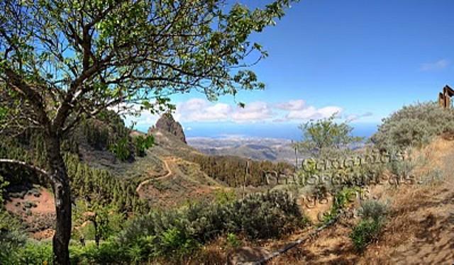 Las_Palmas_de_Gran_Canaria_y_Telde_desde_la_Caldera_de_Los_Marteles_Islas_Canarias__Gran_Canaria_panoramio_flickr