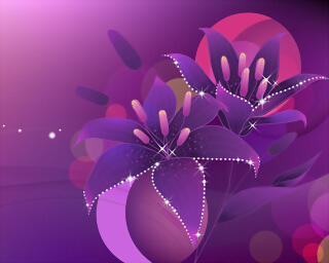 Violet_flowers_