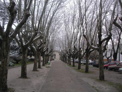 plaza de la municipalidad