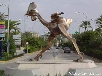 El Gallo de Moron España