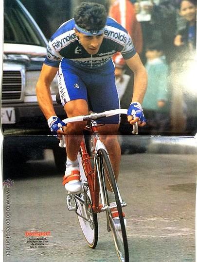 Perico-Reynolds1989g