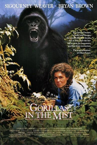 Gorilas_en_la_niebla_La_aventura_de_Dian_Fossey-860343111-large