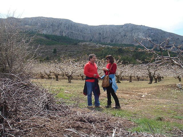 Rosa y Mariano, campo de cerezos