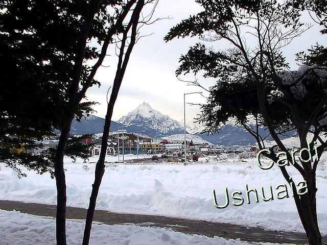 Monte Olivia entre lengas, Ushuaia