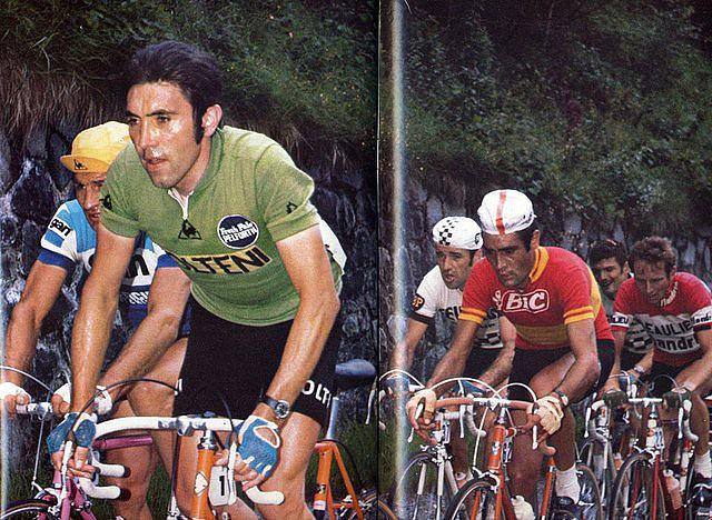 Oca?a-Merckx-Poulidor2