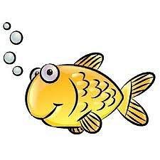 Ozono21 CO2 en el mar trastorna a los peces