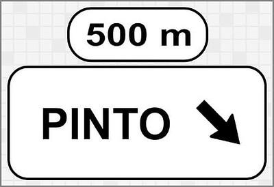 Jeroglífico Pinto solución