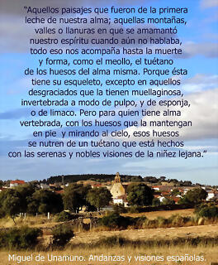 ALMEIDA_raices