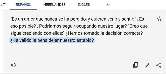 traducion