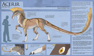 acerir___species_model_sheet_by_ulario-d6fqr2z