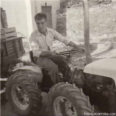 Transportando uva en el tractor (2)