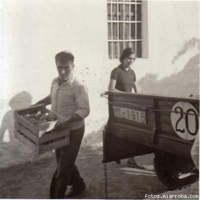 Cargando las cajas de uva en el remolque del tractor (2)