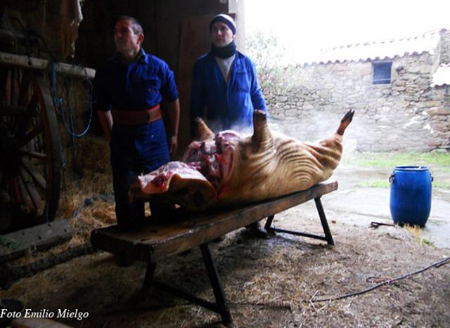 Matanza Emielgo