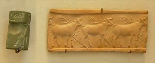 800px-Cylinder_seal_cattle_Louvre_MNB1906