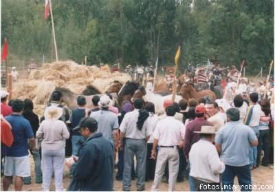 La Trilla de Ciruelos fue una de las mejor organizadas del verano 2006.