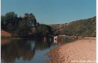 Un paisaje del campo, en el sector del Estero Nilahue, en El Maqui.