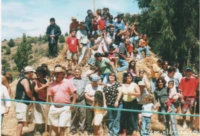 Las Trillas a Yegua Suelta es una de las tradicionales fiestas que brinda el verano pichilemino.