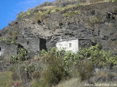 Casa del Arroyo Verdelecho con cabra montés en el tejado