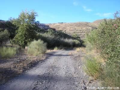 Rambla del Arroyo Verdelecho