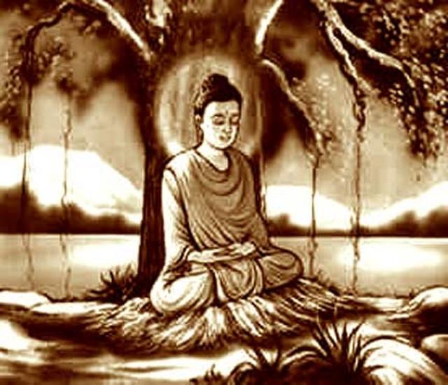 bodhi-tree-samadi